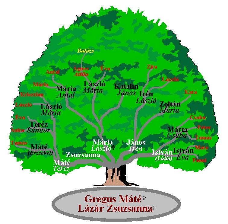 Az 1997.05.04-i találkozóra készült családfa.